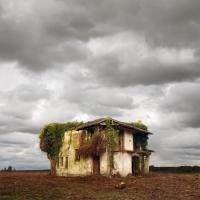 http://pabloga.com/es/files/gimgs/th-13_13_deforestacion.jpg
