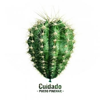 http://pabloga.com/es/files/gimgs/th-16_16_cactus.jpg